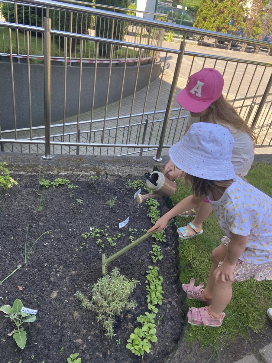 Podlewały i dbały o nasz ogródeczek.